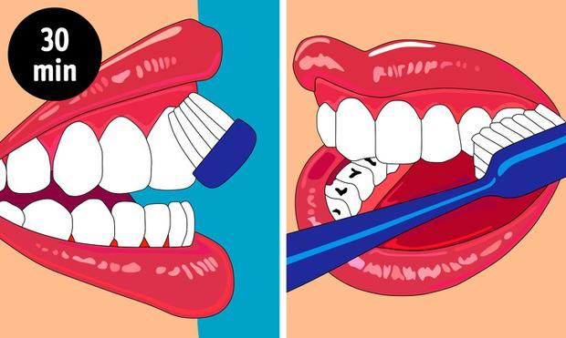 7 sai lầm khi chăm sóc răng miệng khiến hàm răng của bạn bị phá hủy dần theo thời gian - Ảnh 5.