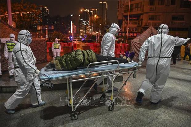 Tổng Giám đốc WHO tới Trung Quốc thảo luận kiểm soát dịch, nhiều quốc gia chuẩn bị sơ tán công dân - Ảnh 1.