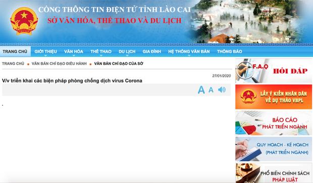 Phòng dịch Corona, tạm ngừng xuất, nhập cảnh khách du lịch qua cửa khẩu quốc tế Lào Cai - Ảnh 2.