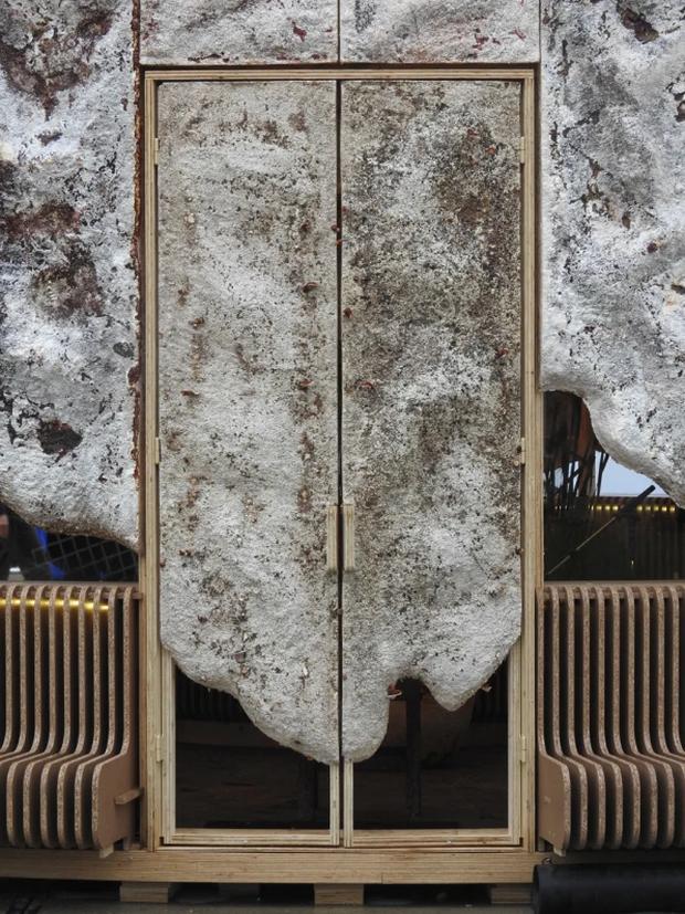 Ngôi nhà phủ nấm thân thiện với Trái Đất: nấm càng tươi tốt, nó càng hút thêm nhiều CO2 khỏi không khí - Ảnh 2.