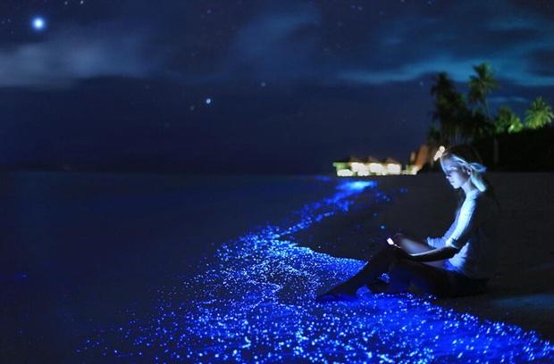 """Dân mạng nửa tin nửa ngờ trước """"bãi biển ngàn sao"""" đẹp như cổ tích ở Maldives, là có thật hay lại chiêu trò chỉnh ảnh câu like? - Ảnh 3."""