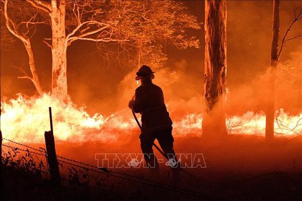 Cháy rừng ở Australia: Bang Victoria ban bố tình trạng thảm họa - Ảnh 1.