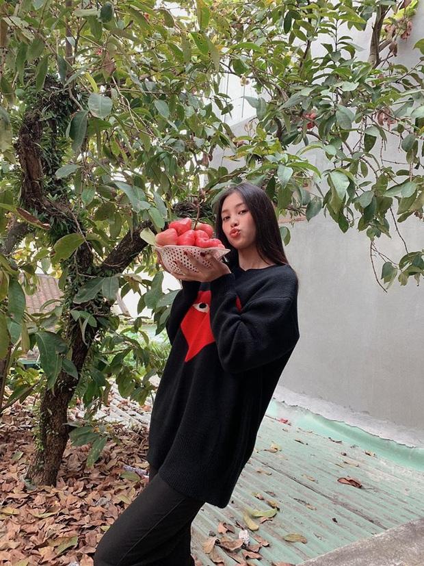 Sau H'Hen Niê, Tiểu Vy cũng thành nàng hậu giản dị nhất nhì Vbiz: Không váy áo cầu kỳ, còn đu cây hái quả ngày Tết - Ảnh 9.