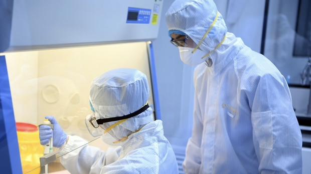Bộ Y tế: Trong vòng 2h, Australia, Singapore, Nhật Bản, Canada cùng tăng số ca mắc virus Corona - Ảnh 1.
