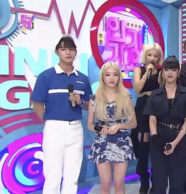Khoảnh khắc chênh chiều cao thòng tim giữa idol nam và nữ: EXO - Red Velvet như phim, Jin (BTS) toàn dìm đồng nghiệp - Ảnh 8.