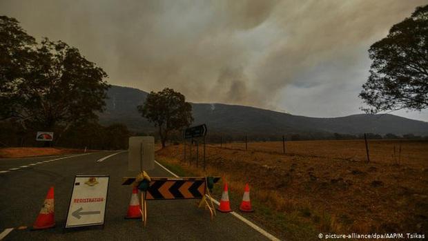Úc tuyên bố tình trạng khẩn cấp khi cháy rừng đe dọa thủ đô Canberra  - Ảnh 1.
