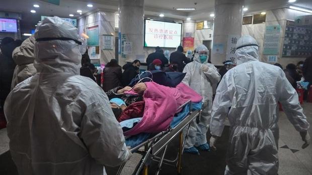 Sở TT&TT sẽ làm việc với Cát Phượng, Ngô Thanh Vân và nhiều sao Việt khi đưa tin sai về đại dịch Corona - Ảnh 1.