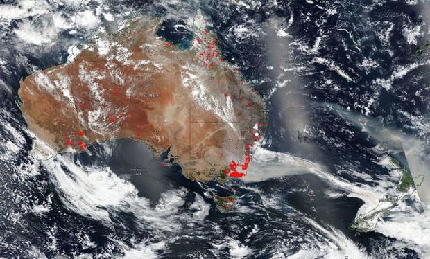 Đại thảm họa cháy rừng Úc nhìn từ không gian: Cả nước như quả cầu lửa, những mảng xanh trù phú bị thay bằng màu khói trắng tang thương - Ảnh 12.