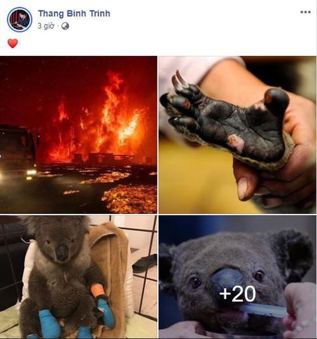 Loạt sao Vbiz lên tiếng về vụ đại thảm họa cháy rừng tại Úc: Trà My Idol, Diễm Trang đều xót thương, Tăng Thanh Hà kêu gọi sự thay đổi - Ảnh 5.