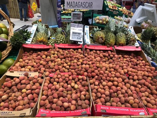 """Con dân Việt ở nước ngoài """"khóc ròng"""" vì trái vải: Giá nơi nào cũng cao, mua được vài quả ăn chẳng bõ - Ảnh 7."""