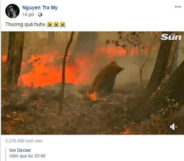 Loạt sao Vbiz lên tiếng về vụ đại thảm họa cháy rừng tại Úc: Trà My Idol, Diễm Trang đều xót thương, Tăng Thanh Hà kêu gọi sự thay đổi - Ảnh 3.