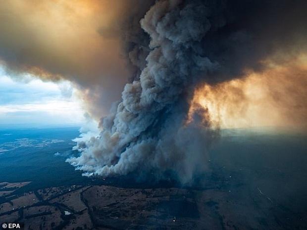 Ơn trời mưa rồi! Trận mưa lớn cứu tinh cho đại thảm họa đã xuất hiện, nhiệt độ giảm làm dịu cơn bão lửa tại Úc - Ảnh 5.