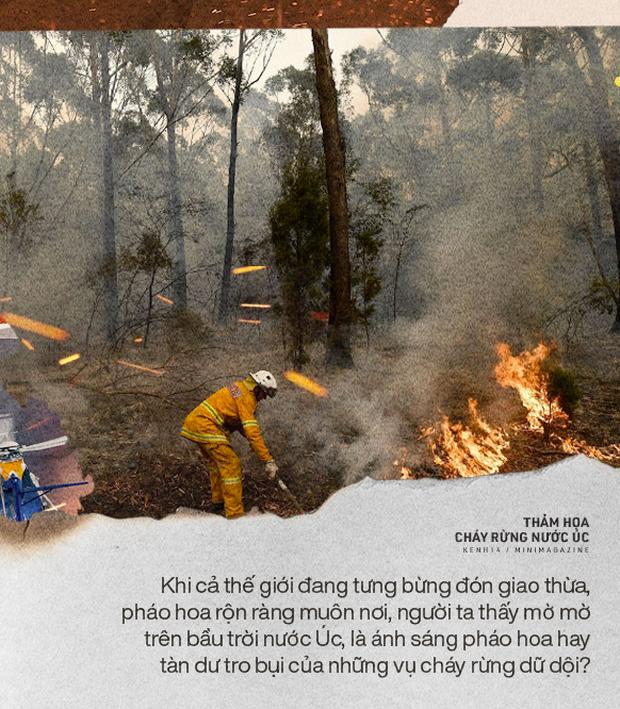 """""""Hỏa ngục"""" nước Úc tiếp nối mùa Đông không lạnh ở Matxcơva: Biến đổi khí hậu có nhấn chìm thập kỷ mới trong chảo lửa? - Ảnh 1."""