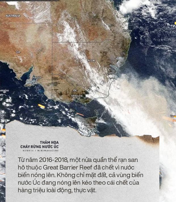 """""""Hỏa ngục"""" nước Úc tiếp nối mùa Đông không lạnh ở Matxcơva: Biến đổi khí hậu có nhấn chìm thập kỷ mới trong chảo lửa? - Ảnh 4."""