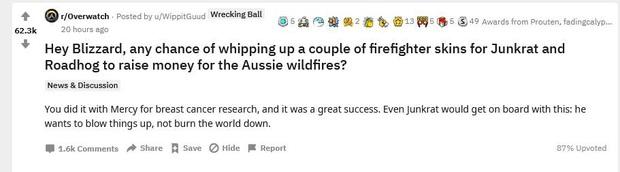 Cộng đồng game thủ Overwatch đề nghị nhà phát hành tạo trang phục, gây quỹ quyên góp cho thảm họa cháy rừng ở Australia - Ảnh 1.