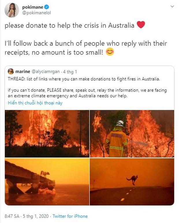 Hướng về Australia: Nữ streamer xinh đẹp Pokimane cùng hàng loạt đồng nghiệp nổi tiếng kêu gọi quyên góp ủng hộ khắc phục cháy rừng - Ảnh 1.