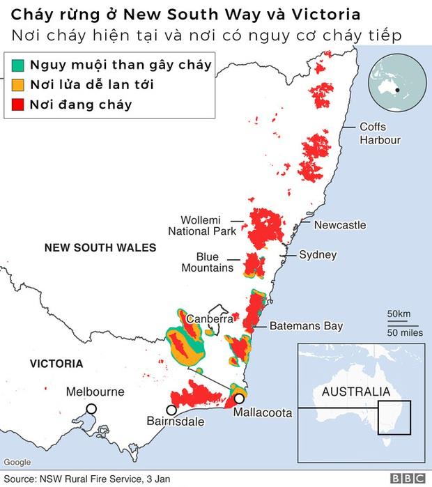 Lý giải trực quan về đám cháy khủng khiếp tại Úc: nhiệt lượng từ đâu, tại sao cháy rừng lại gây bão sét, người ta có chạy thoát được ngọn lửa không? - Ảnh 2.