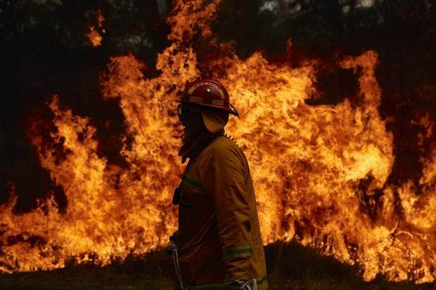 Những tin tức mát lòng giữa bão lửa kinh hoàng, thắp sáng thêm niềm tin và sự lạc quan cho người dân Úc - Ảnh 1.