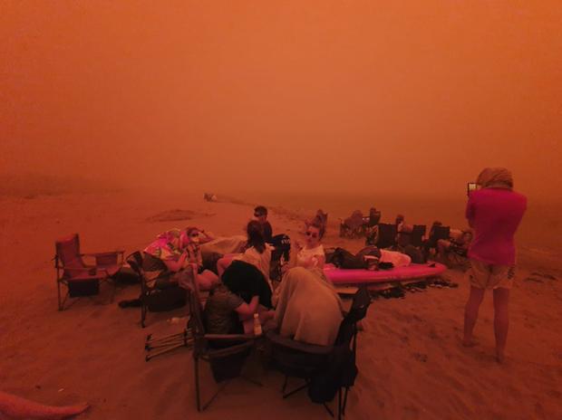 Thương quá tự nhiên ơi: Hình ảnh xót xa cho thấy đại thảm họa cháy rừng tại Úc đang khiến các loài vật bị giày vò kinh khủng đến mức nào - Ảnh 23.