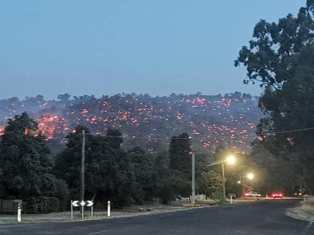 Lại thêm đồi cây xanh mướt ở Úc biến thành đồi dung nham đầy chết chóc, sáng rực như ngọn đuốc khổng lồ trong đêm - Ảnh 3.