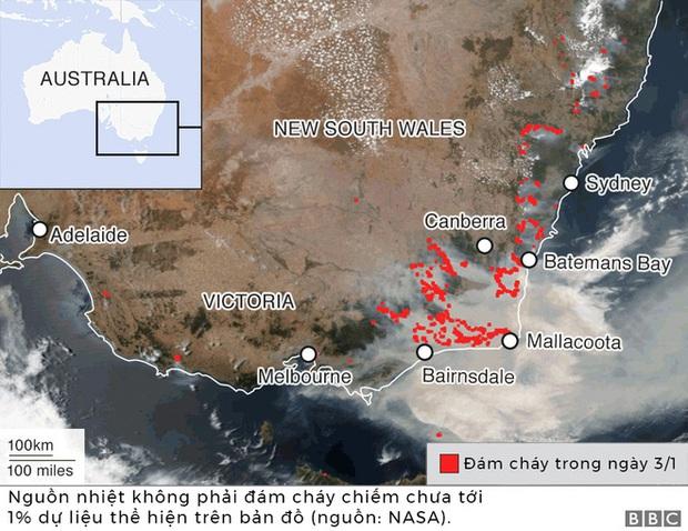 Lý giải trực quan về đám cháy khủng khiếp tại Úc: nhiệt lượng từ đâu, tại sao cháy rừng lại gây bão sét, người ta có chạy thoát được ngọn lửa không? - Ảnh 3.