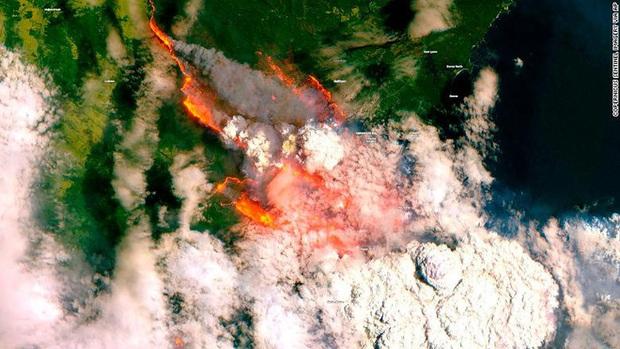Giải thích nhanh về đại thảm họa cháy rừng đang diễn ra tại Úc - Ảnh 3.