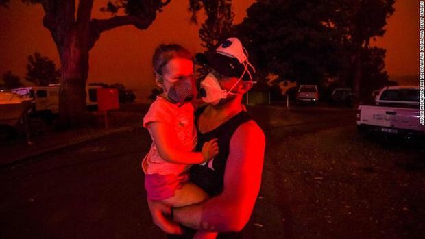 Thương quá tự nhiên ơi: Hình ảnh xót xa cho thấy đại thảm họa cháy rừng tại Úc đang khiến các loài vật bị giày vò kinh khủng đến mức nào - Ảnh 24.