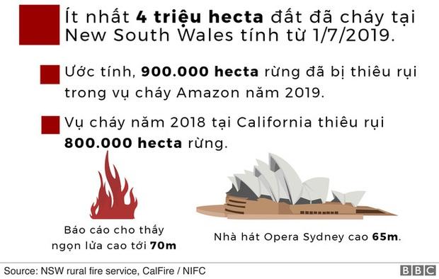 Lý giải trực quan về đám cháy khủng khiếp tại Úc: nhiệt lượng từ đâu, tại sao cháy rừng lại gây bão sét, người ta có chạy thoát được ngọn lửa không? - Ảnh 4.