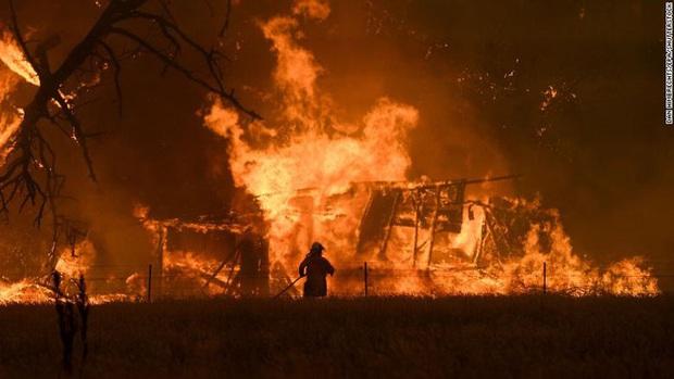 Giải thích nhanh về đại thảm họa cháy rừng đang diễn ra tại Úc - Ảnh 7.