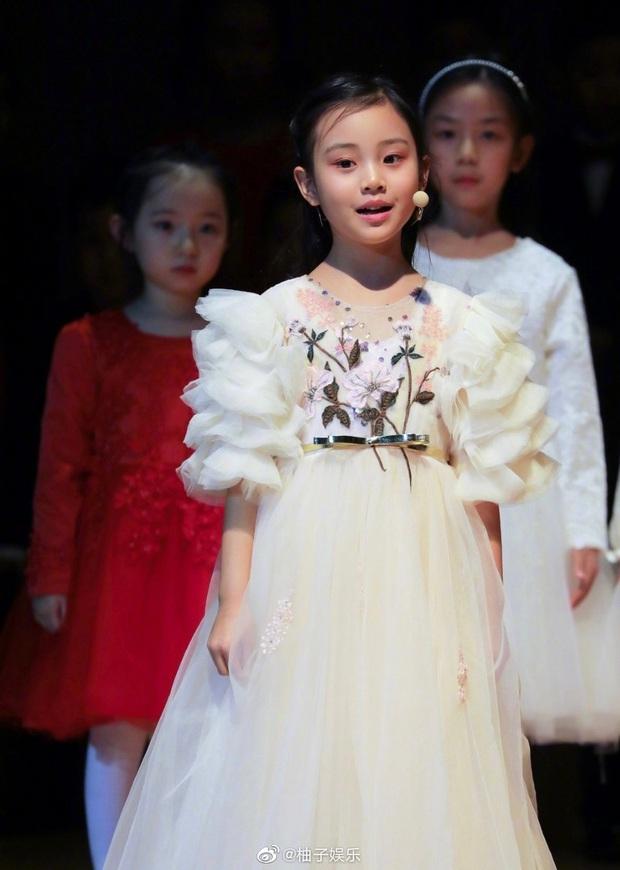 Điềm Hinh mới chỉ 7 tuổi nhưng đã gây sốt Weibo: Càng lớn càng giống Giả Nãi Lượng, dự đoán trở thành mỹ nhân tương lai - Ảnh 6.