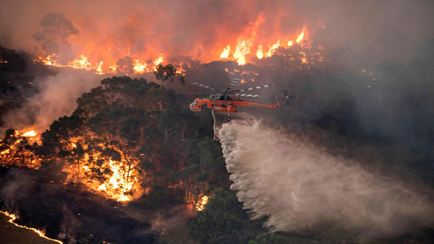 Tranh cãi nảy lửa: Sau tin Thor quyên góp 23 tỷ vì thảm họa cháy rừng Úc, loạt sao bỗng bị chỉ trích gay gắt - Ảnh 8.