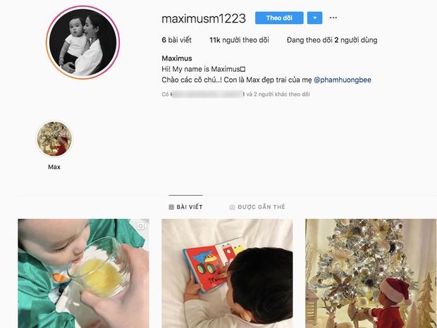 Phạm Hương chuẩn mẹ bỉm sữa Vbiz: Chăm con cực khéo, bé Max 1 năm tuổi đã có instagram 10 ngàn follower - Ảnh 2.