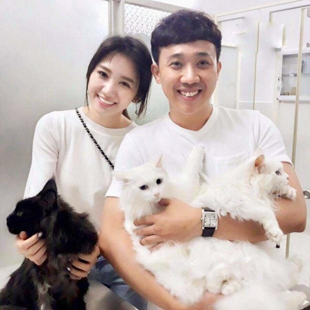 Hari Won khiến Trấn Thành sốc nặng, lập tức bị bắt ra tòa hỏi tội vì 2 chú mèo - Ảnh 5.