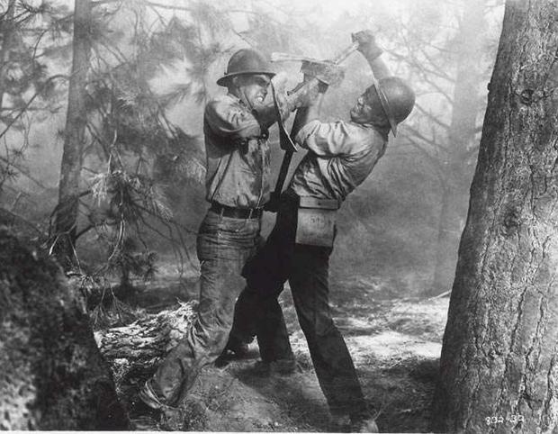 3 bộ phim gây ám ảnh tột độ về nạn cháy rừng, kinh hoàng đến mấy cũng không bằng đại thảm họa ở Úc - Ảnh 5.