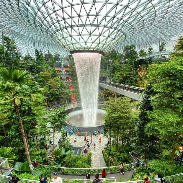 HOT: Thác nước trong nhà lớn nhất thế giới ở Singapore thông báo đóng cửa bảo trì, ai đến đây dịp này đành lỡ hẹn góc sống ảo nổi tiếng - Ảnh 3.