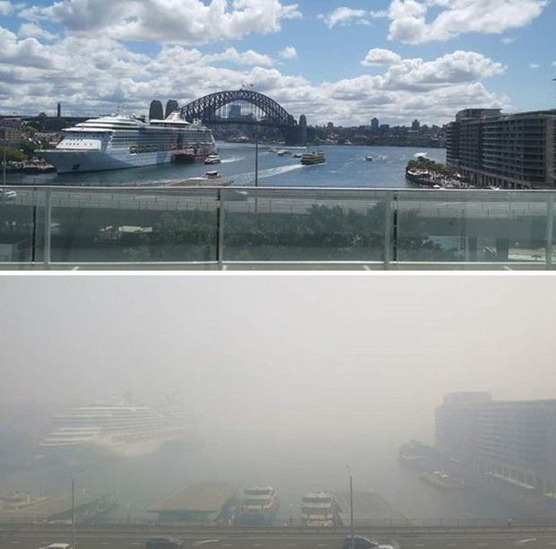 Chùm ảnh đau lòng: Nước Úc trước và sau khi ngọn lửa hung tàn quét qua - Ảnh 14.
