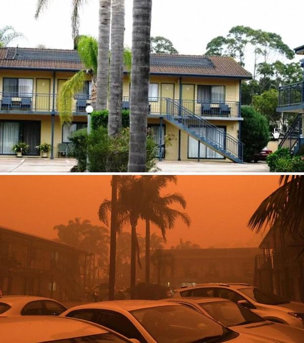Chùm ảnh đau lòng: Nước Úc trước và sau khi ngọn lửa hung tàn quét qua - Ảnh 21.