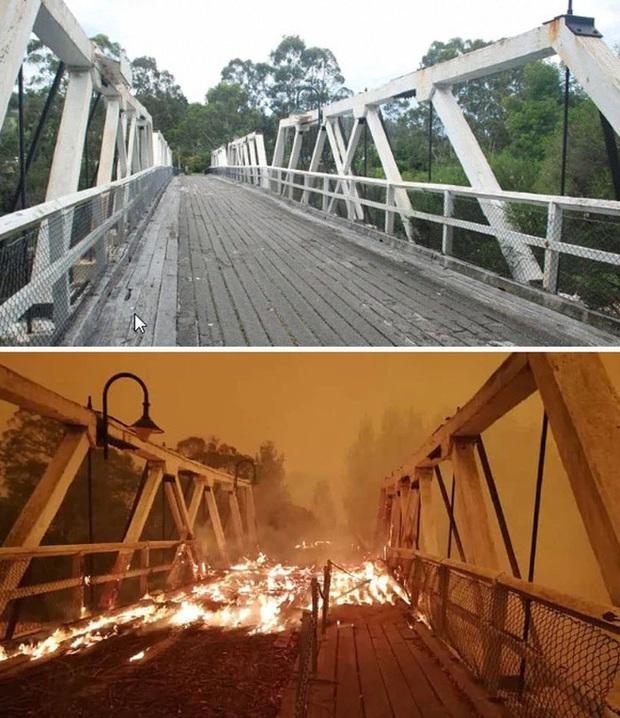 Chùm ảnh đau lòng: Nước Úc trước và sau khi ngọn lửa hung tàn quét qua - Ảnh 8.