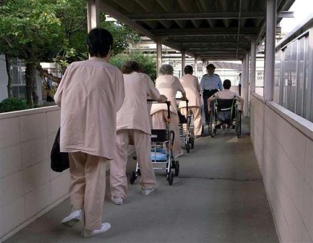 Vào tù dưỡng già: Lối thoát cực đoan của những người phụ nữ cô độc và hệ quả nghiêm trọng đè nặng lên xã hội Nhật Bản - Ảnh 8.