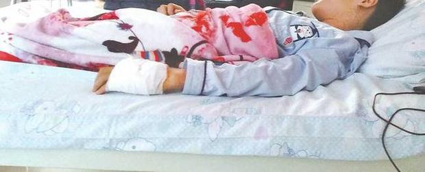 Tiết kiệm hơn 1 triệu đồng từ tiền tiêu vặt, cậu bé giấu mẹ mua vật nuôi trên mạng rồi nhập viện khẩn cấp suýt mất mạng - Ảnh 2.