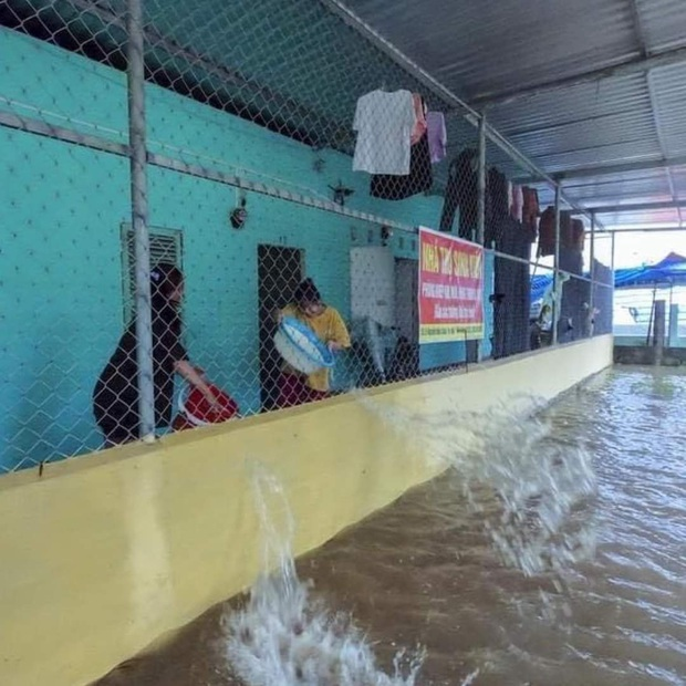 Nỗi khổ của sinh viên mùa mưa: Phòng ốc ngập lênh láng, quần áo sách vở ướt nhẹp, cả xóm trọ thi nhau tát nước - Ảnh 1.