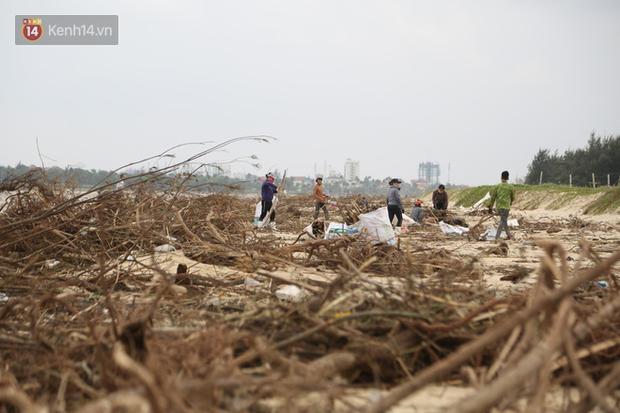 Ảnh: Người dân đổ ra biển nhặt củi trong cơn lũ lịch sử ở Quảng Bình - Ảnh 2.