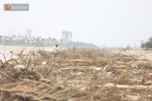 Ảnh: Người dân đổ ra biển nhặt củi trong cơn lũ lịch sử ở Quảng Bình - Ảnh 3.