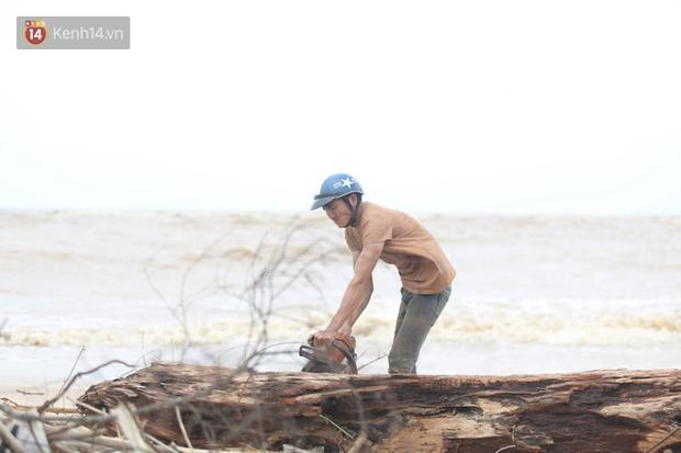 Ảnh: Người dân đổ ra biển nhặt củi trong cơn lũ lịch sử ở Quảng Bình - Ảnh 6.