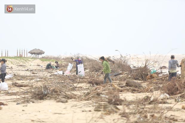 Ảnh: Người dân đổ ra biển nhặt củi trong cơn lũ lịch sử ở Quảng Bình - Ảnh 10.