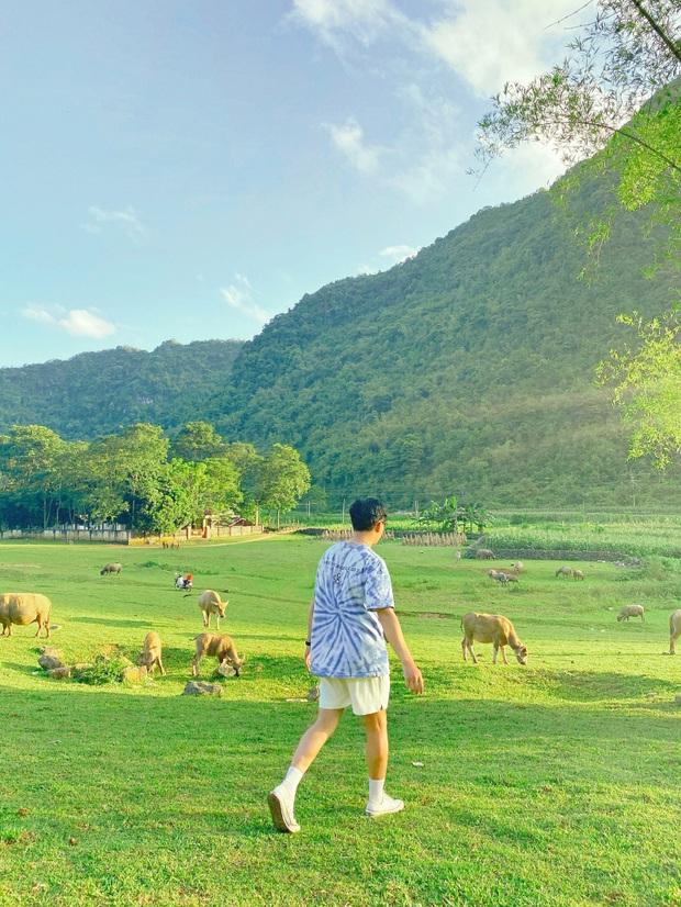 Không ai nghĩ ở Việt Nam có cao nguyên xanh mơn mởn tuyệt đẹp, hạ cánh nơi đây được rồi khỏi đi Thuỵ Sĩ - Ảnh 9.
