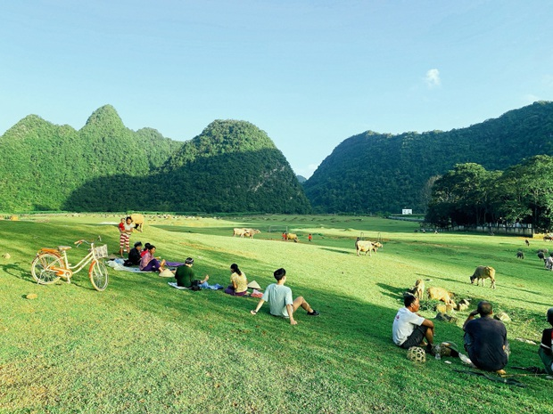 Không ai nghĩ ở Việt Nam có cao nguyên xanh mơn mởn tuyệt đẹp, hạ cánh nơi đây được rồi khỏi đi Thuỵ Sĩ - Ảnh 6.