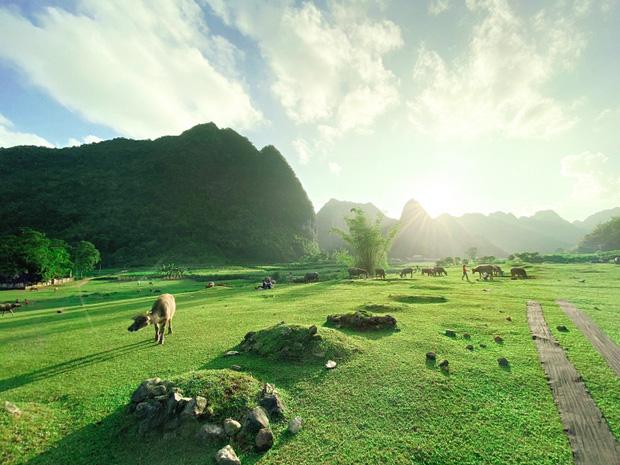 Không ai nghĩ ở Việt Nam có cao nguyên xanh mơn mởn tuyệt đẹp, hạ cánh nơi đây được rồi khỏi đi Thuỵ Sĩ - Ảnh 5.