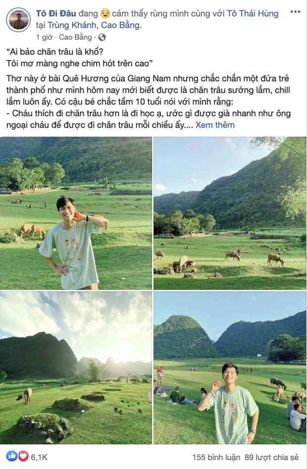 Không ai nghĩ ở Việt Nam có cao nguyên xanh mơn mởn tuyệt đẹp, hạ cánh nơi đây được rồi khỏi đi Thuỵ Sĩ - Ảnh 2.
