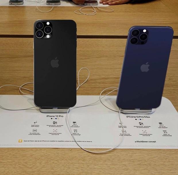 Rò rỉ thông tin 2 màu mới của iPhone 12 trước ngày ra mắt - Ảnh 2.